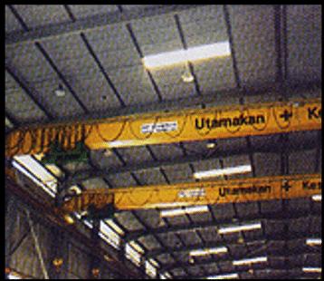 Single Girder Crane BD Cranetech
